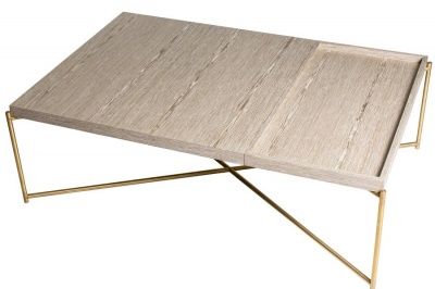 Iris Brass Frame Weathered Rectangle Coffee Table with Tray